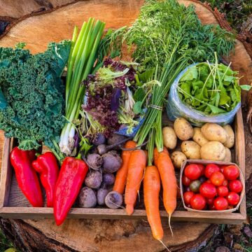 After signing up for their Summer CSA Basket, customers will receive access to fresh vegetables all summer long and into the fall.