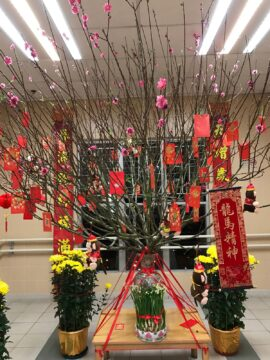 Kind of like a Christmas tree but a Lunar New Year tree.